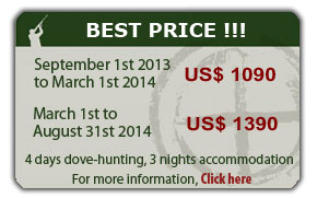 Argentina dove hunting best price